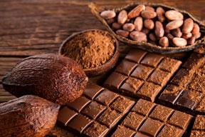 Maquinaria para la fabricación de Chocolate